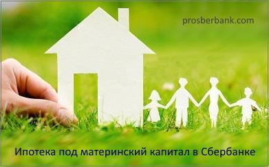 При получении внж одного из родителей вместе с ребенком несовершенлетнем подтверждениие дохода